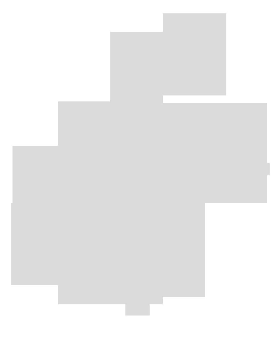 feuilles grises ajustees